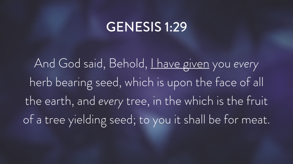Genesis: In the Beginning...Grace - Part 2.011.png
