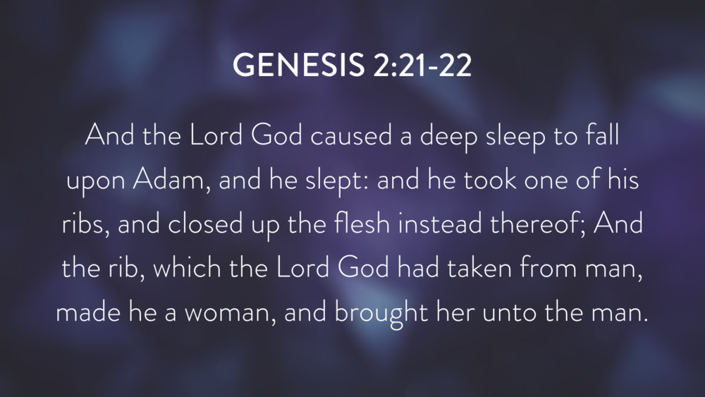 Genesis: In the Beginning...Grace - Part 2.014.png