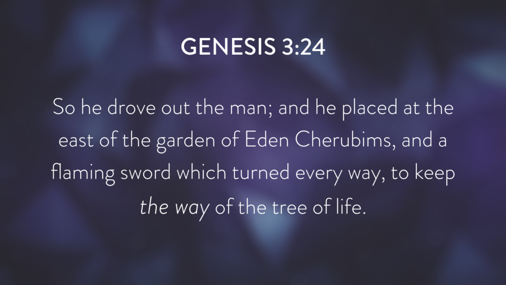 Genesis: In the Beginning...Grace - Part 2.029.png