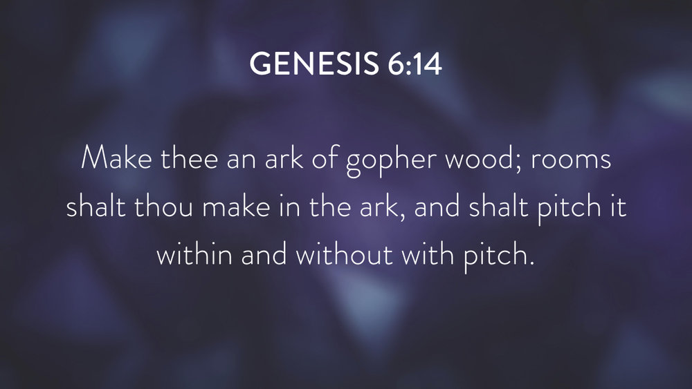 Genesis: In the Beginning...Grace - Part 4.024.jpeg