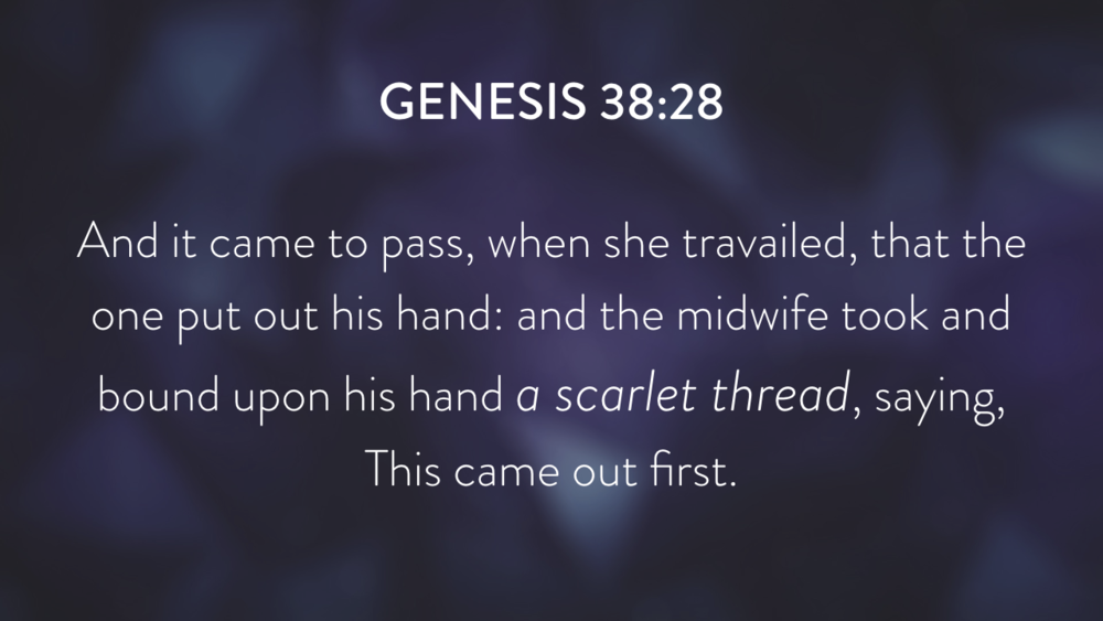Genesis: In the Beginning...Grace - Part 8 PNG.016.png