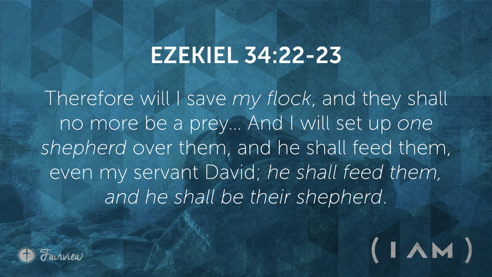 %22I Am%22 the Good Shepherd - Week 5.003.jpeg