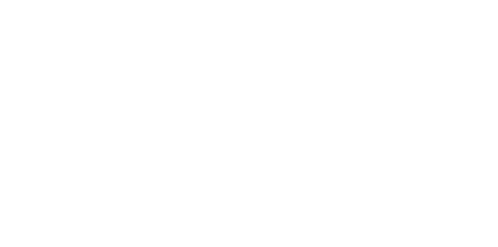 Level Ent Watermark No Shadow.png