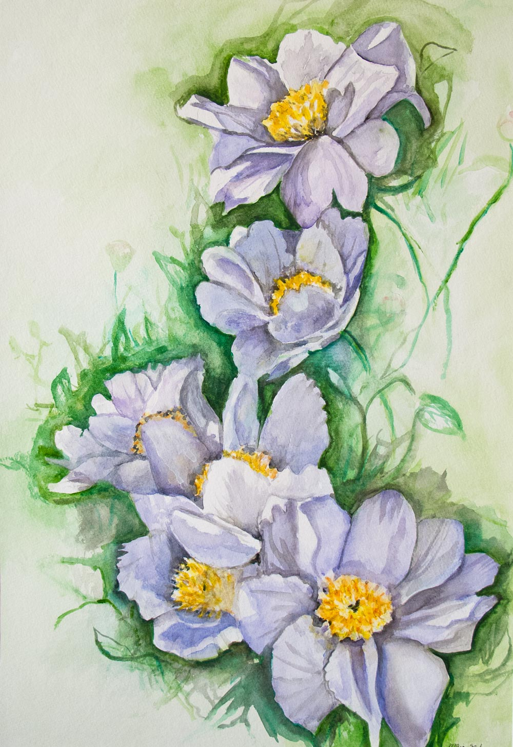 """""""White Flowers"""" by Allison Mahaney"""