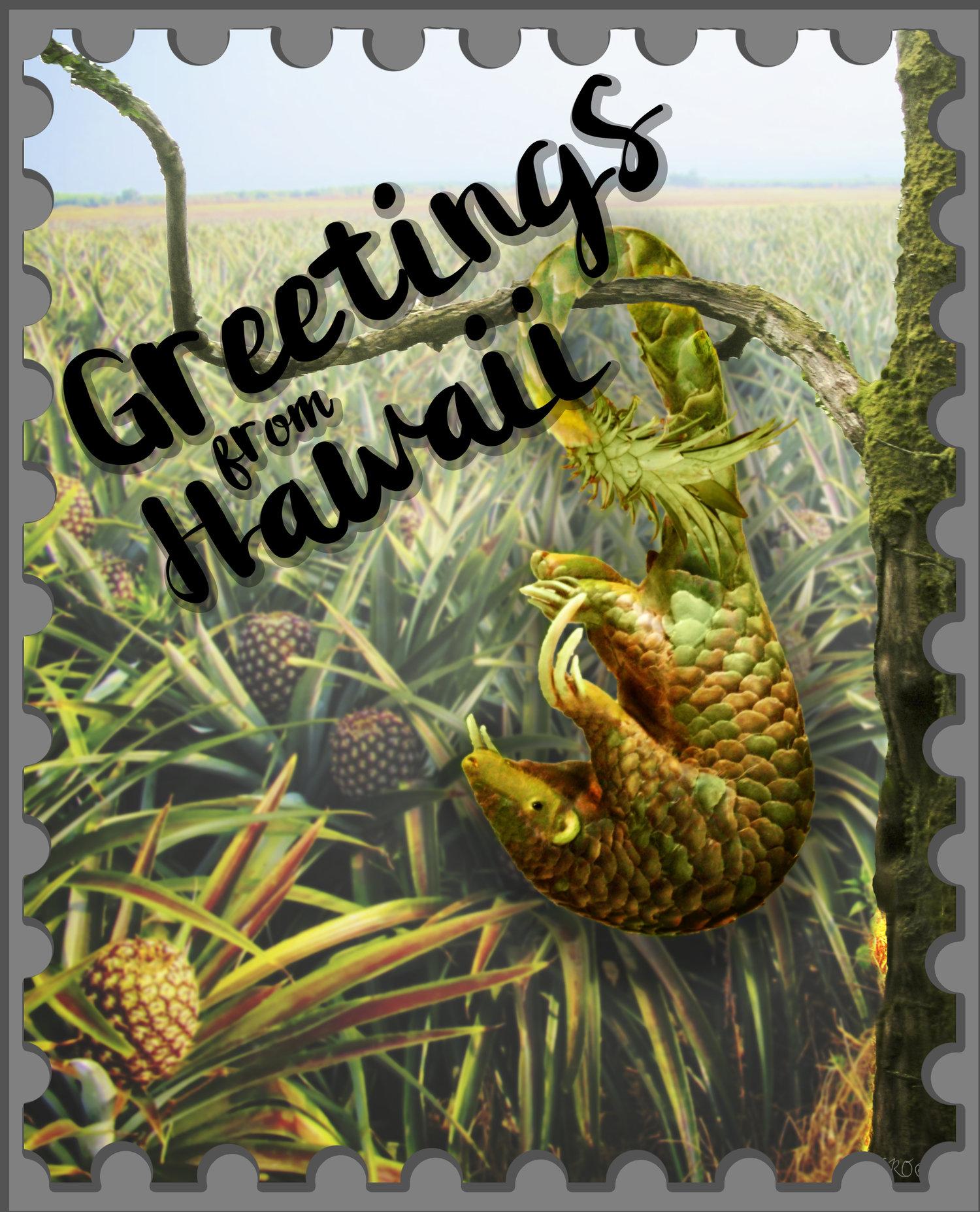 Abby osborne digital design aas abby osborne greetings from hawaii complete piece kristyandbryce Choice Image