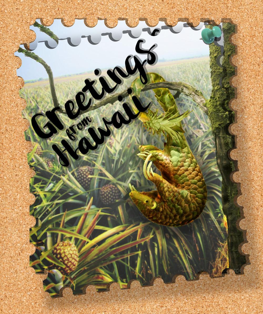 Abby osborne greetings from hawaii abby osborne greetings from hawaii complete piece kristyandbryce Choice Image