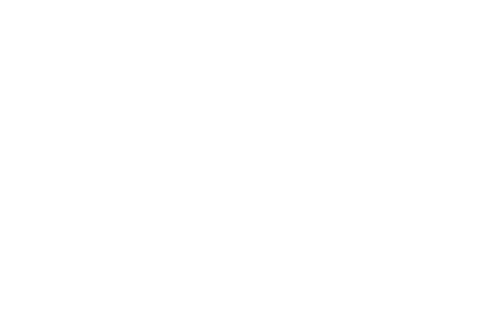 AWARD OF MERIT - The IndieFest Film Awards - 2012.png