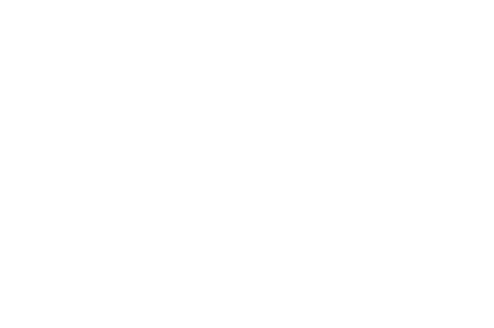 FINALIST - The Webby Awards - 2013.png