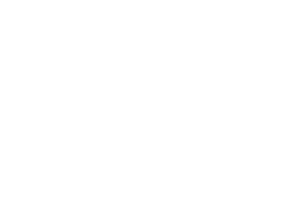 OFFICIAL SELECTION - Arizona Underground Film Festival - 2012.png