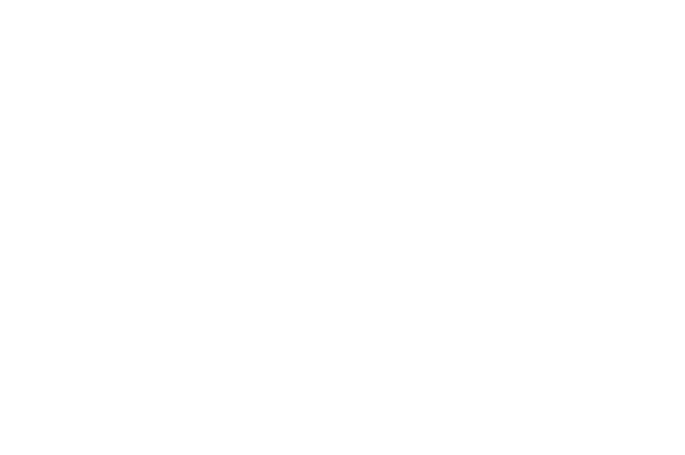 OFFICIAL SELECTION - Big Sky Documentary Film Festival - 2012.png