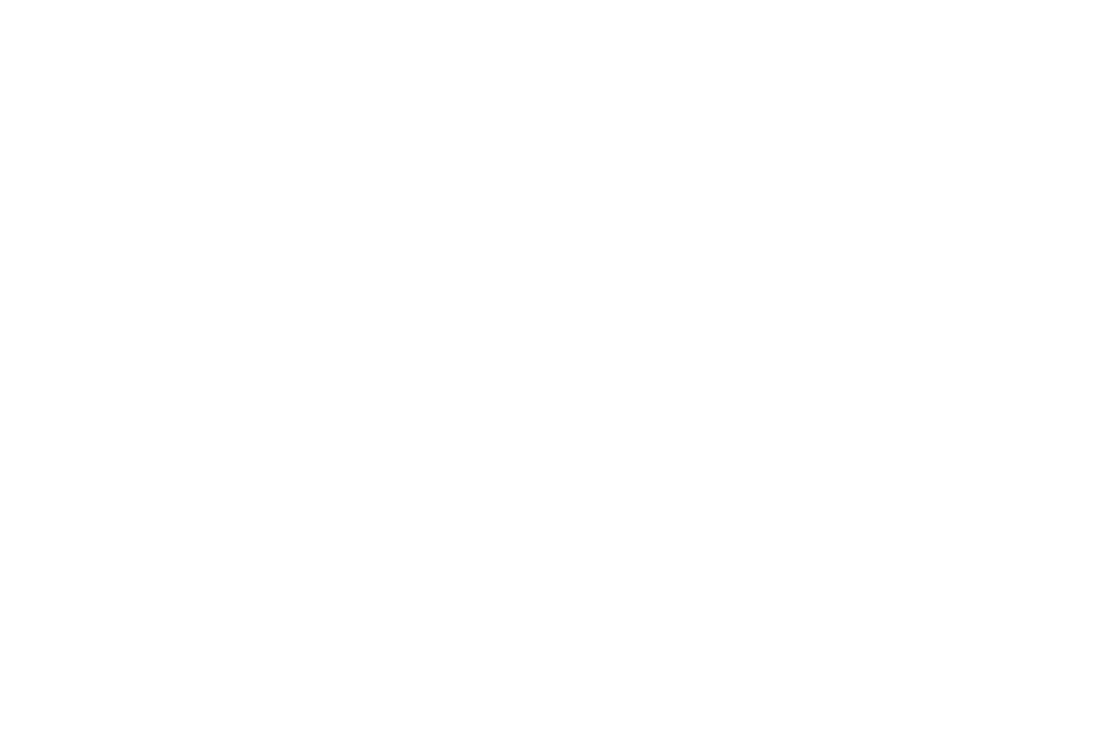 OFFICIAL SELECTION - Hungry Film  Food Festival - 2016.png
