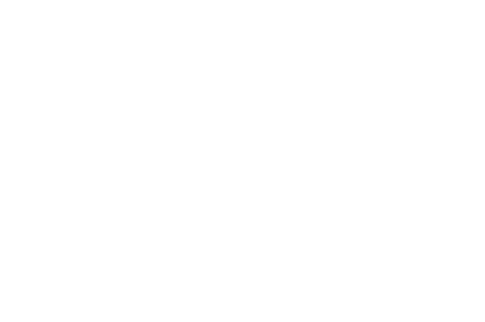 OFFICIAL SELECTION - Lookout Wild Film Festival - 2013.png