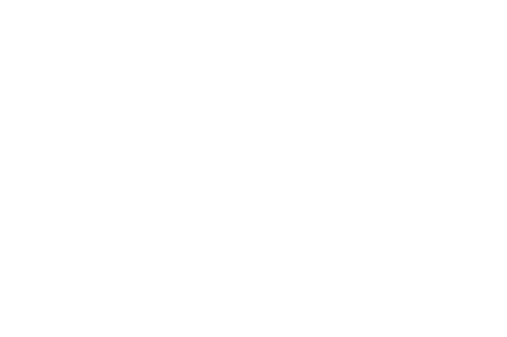OFFICIAL SELECTION - Phoenix Film Festival - 2013.png