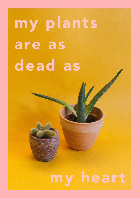 PlantsRdead.jpg