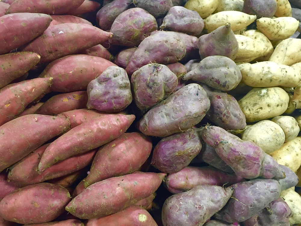 favourite vegetable potato Download and read potatoes eighty five delicious recipes for everyones favorite vegetable potatoes eighty five delicious recipes for everyones.