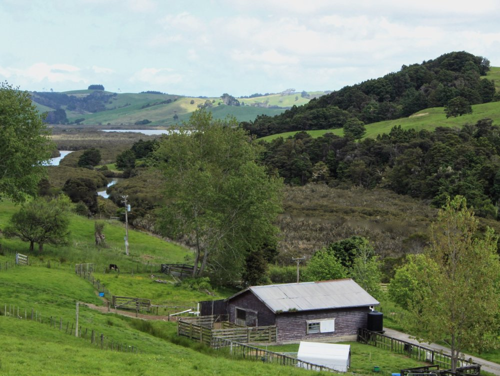 Salty River Farm