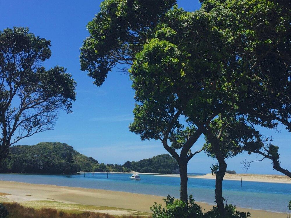 Mangawhai estuary