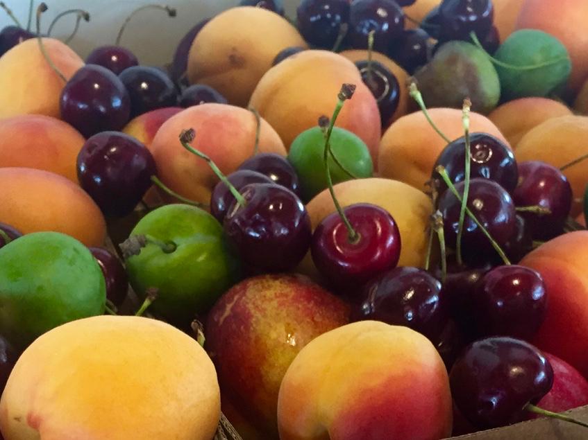 Central Otago stone fruit