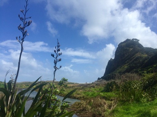 Piha food trail