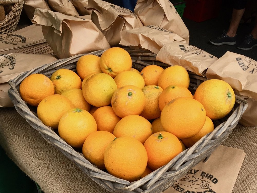 Gisborne oranges on food trail