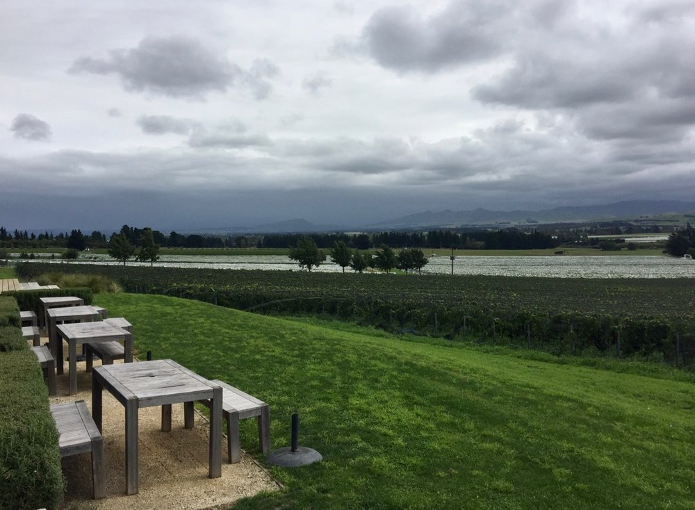 Black Estate, Waipara