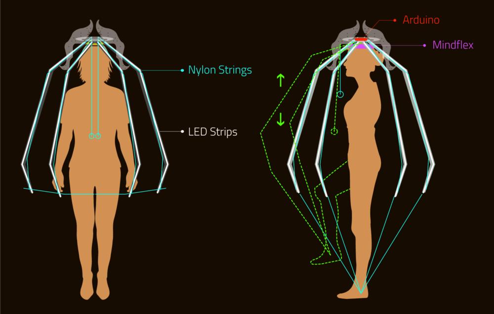 A Diagram.