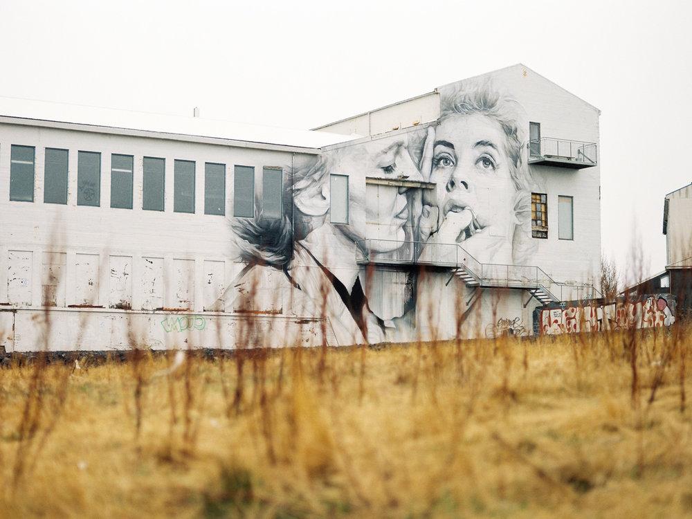 iceland reykjavik street art.jpg