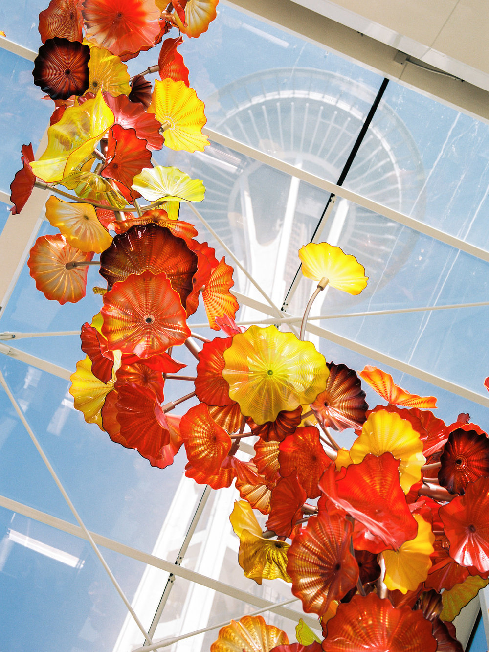 Chihuly Garden and Glass Seattle Wedding Venue in Downtown Seattle with Space Needle View by Alexandra Knight Photography