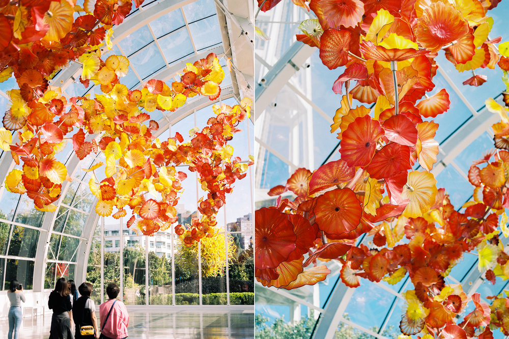 chihuly garden of glass wedding venue.jpg