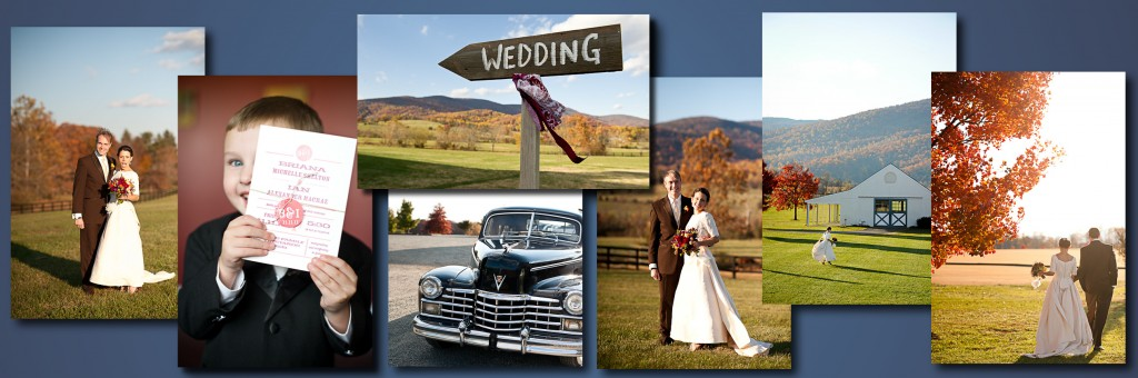 King Family Vineyards Wedding, Winery Wedding, Charlottesville Winery Wedding, Charlottesville Wedding