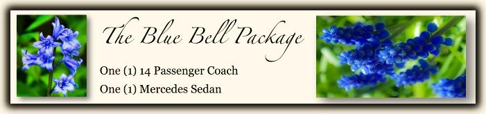 Charlottesville Wedding Package [1] Bluebell