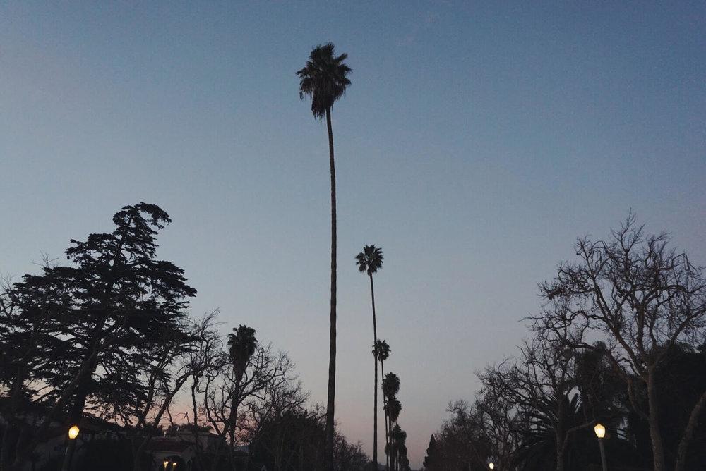 LA9.jpg