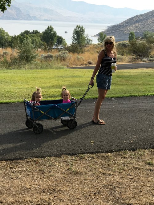 Grandma (me) taking two of the babies for a walk.