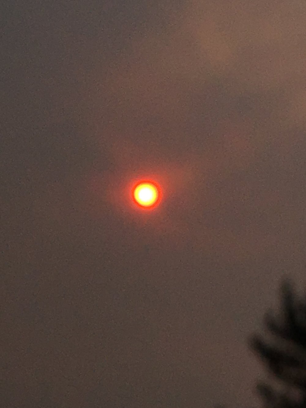 Sun mid day from my deck (sorry lousy quality)