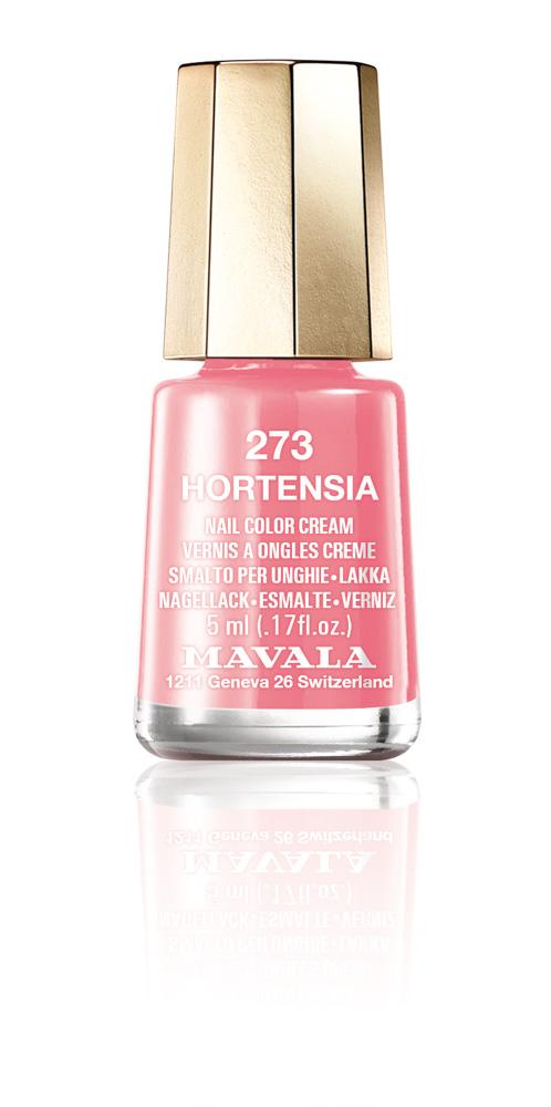 273 HORTENSIA