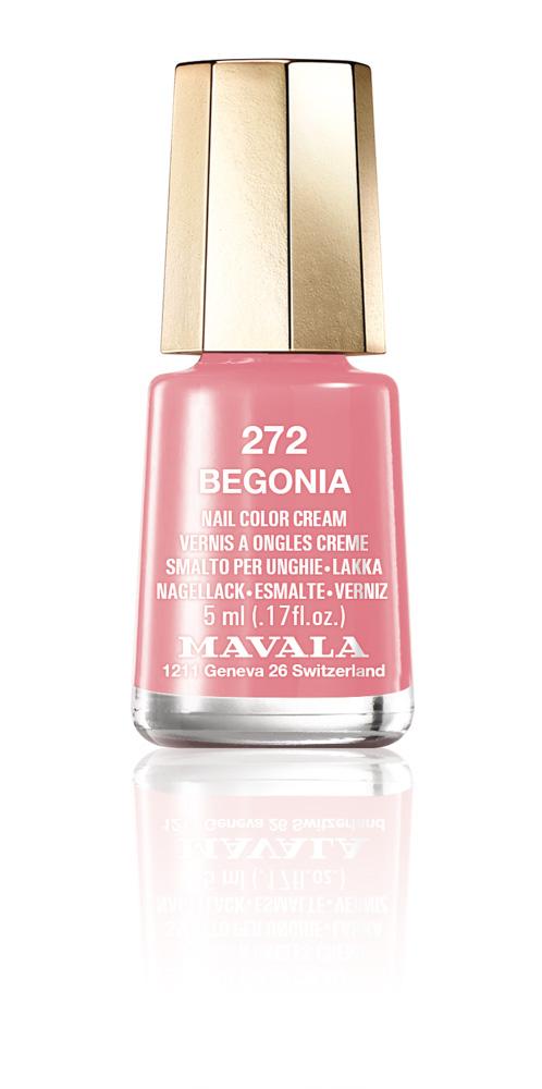 272 BEGONIA