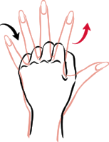 Hands exercise3.png