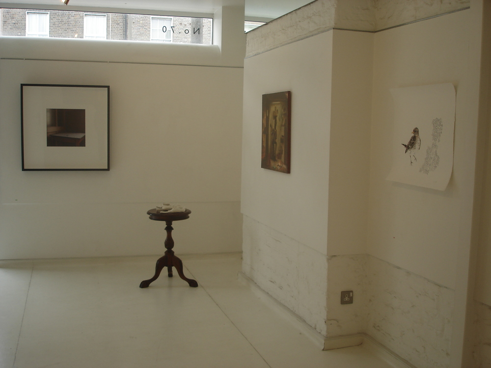 Lens, group exhibition with artists including Dianne Whyte, Kate Murphy, Ciara O'Hara and Laura Fitzgerald, 2008