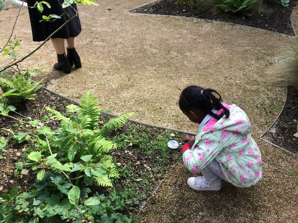 Children used magnifying glasses to look for nature's drawings