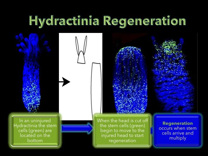 Session 3 presentation image 3.jpg