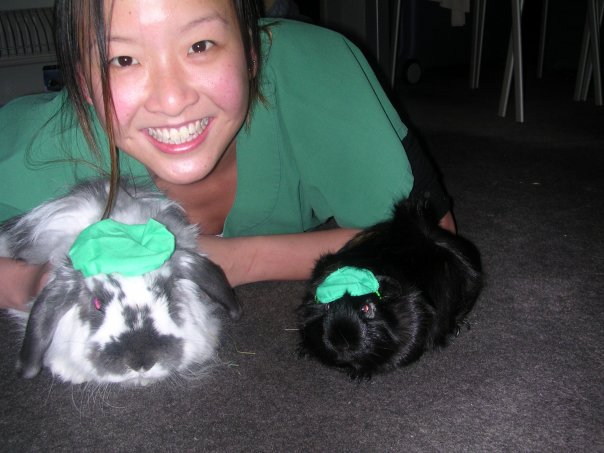 Dr Mops (chashmere lop) Dr Pipsquek (guinea pig) and Dr Song