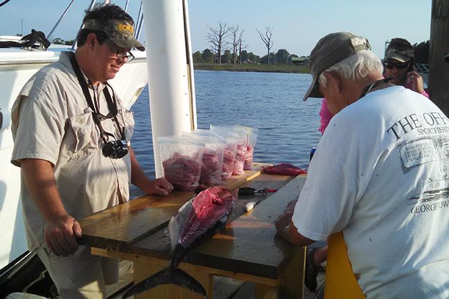 Tuna - fresh tuna 3-72.jpg