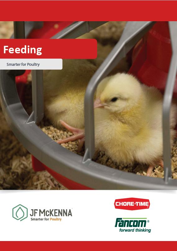 Download Feeding Brochure