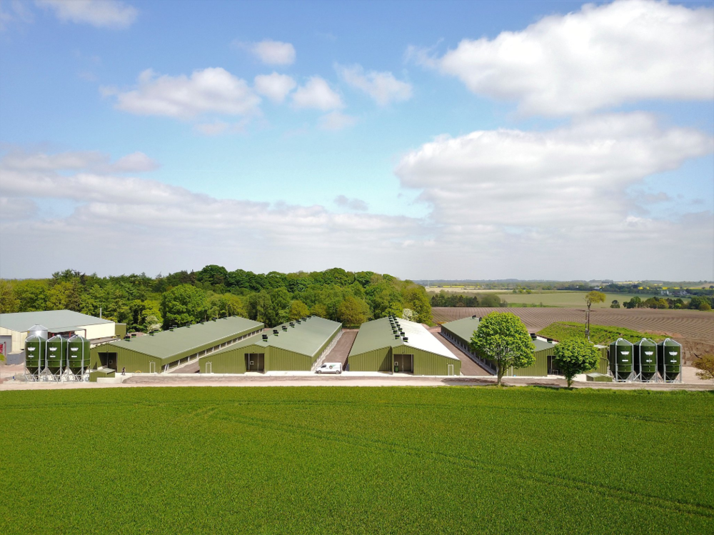Poultry Ventilation - See how JF McKenna helped this customer to maximise his output.