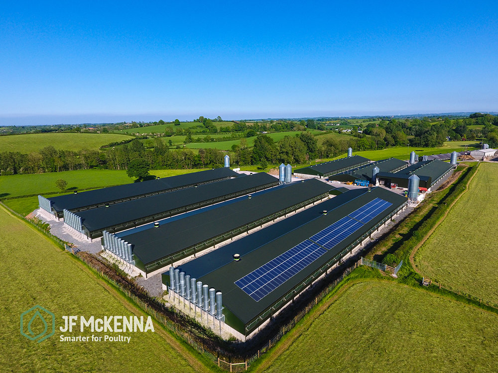 Broiler Project   Northern Ireland
