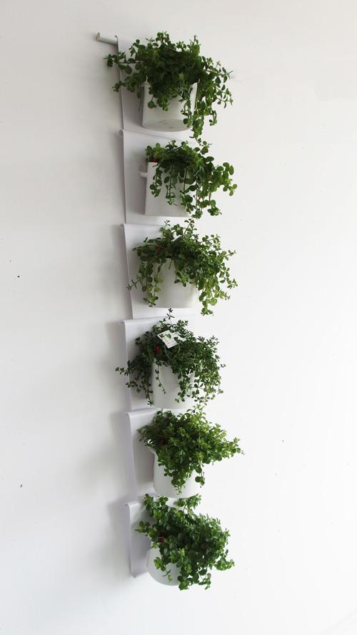 Vanzha-planters-06.jpg