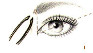 "Its always tricky to figure out what kind of brow is right for you….here is a general guide so that you can create the perfect ""frame"" for your face….   Long Face - Balanced with a slightly arched brow.   Square Face - centered arch to elongate the brow. The arch above the pupil but the end of the brow toward the center of the ear.   Round Face - Very high arch with the highest part of the arch placed above the pupil   Oval - Fairly straight brow, arched slightly, arched outside the iris.   XOXO -Lyndsey"