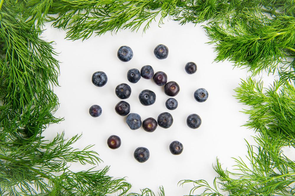 rp-frukt-9.jpg