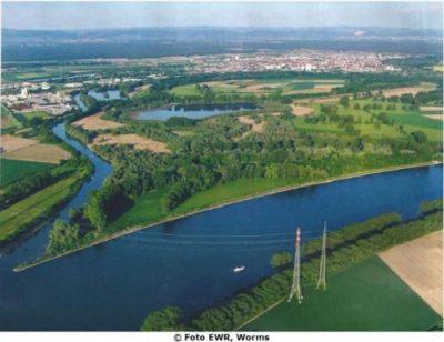 Quelle: Arbeitsgemeinschaft Lampertheimer Altrhein