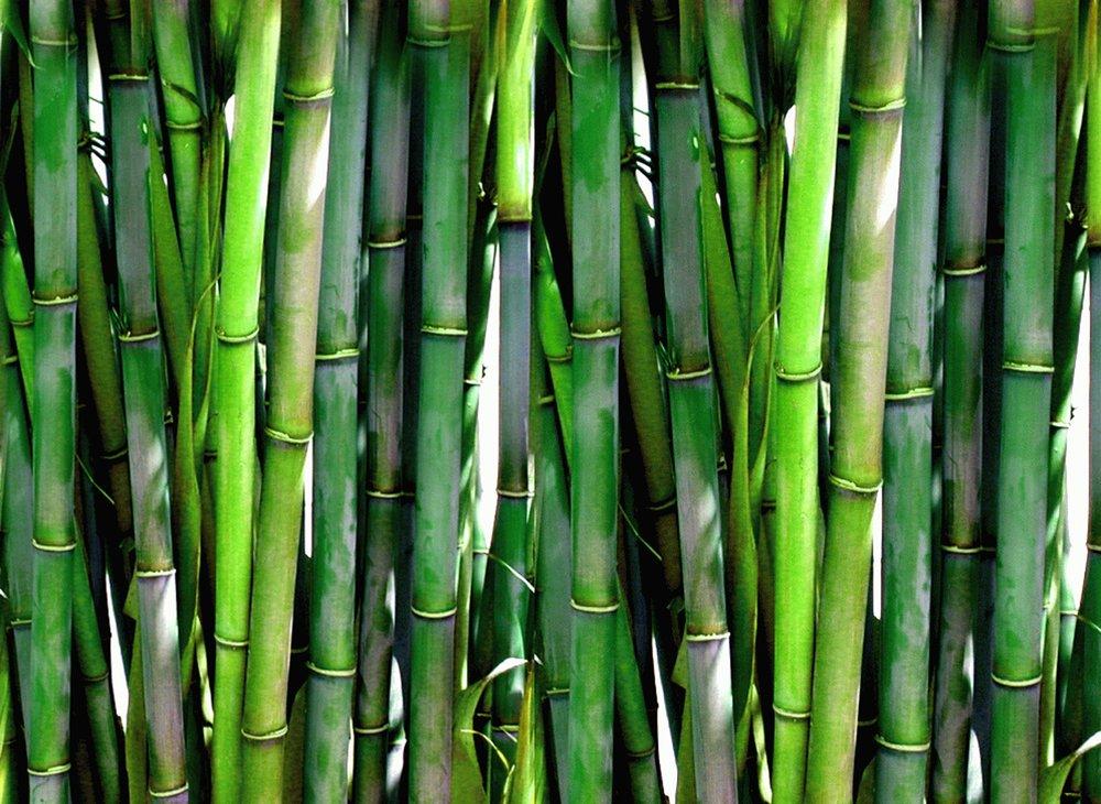 bamboomassageatl